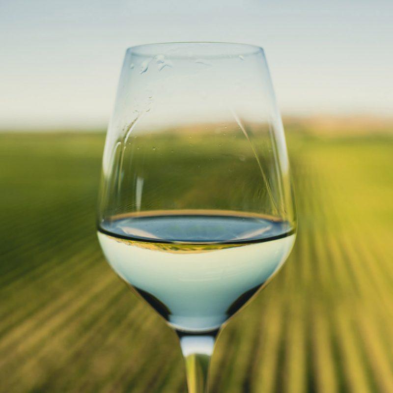Marlborough Springs wine glass